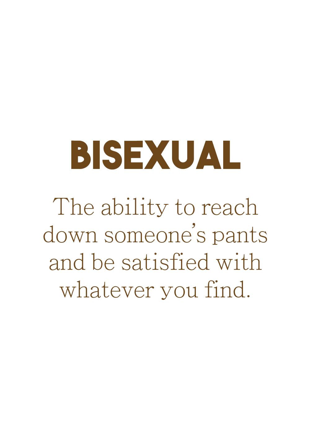 Billede af Definition of bisexual - LGBT plakat