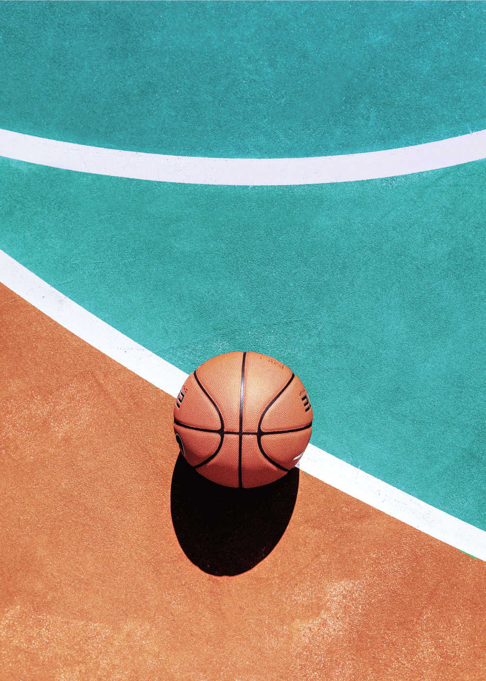 Basket lines plakat
