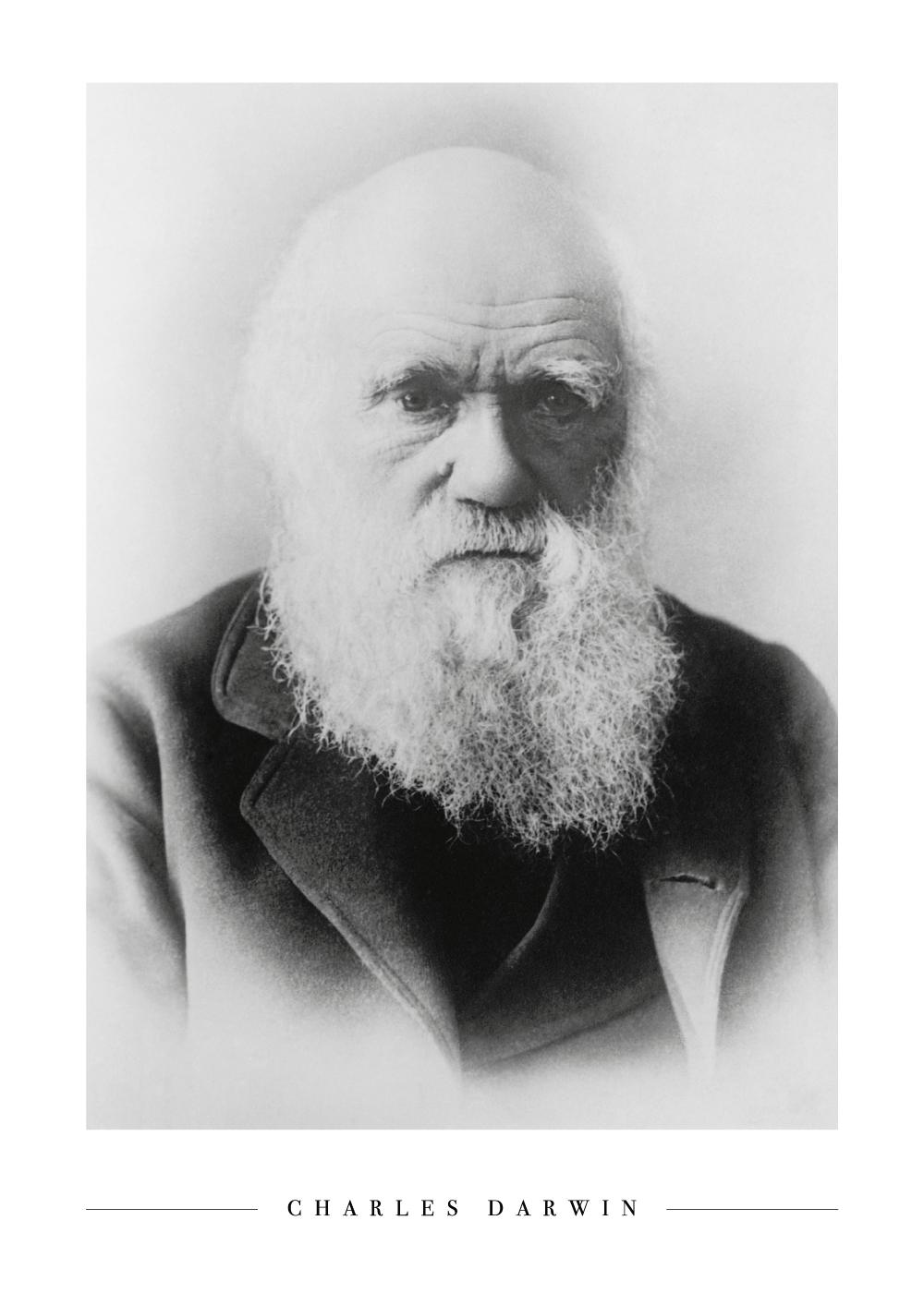 Charles Darwin - Plakat