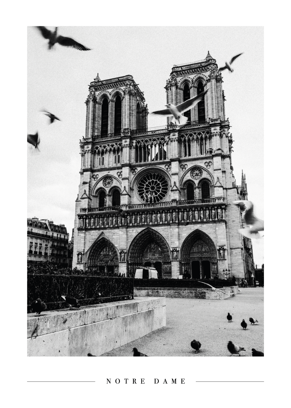 Notre Dame - Plakat