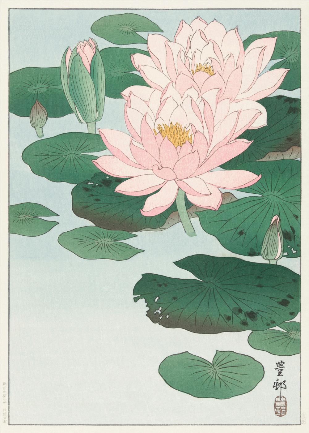Waterlilies - Japansk kunstplakat