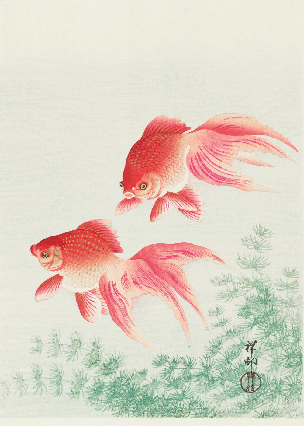 Billede af Goldfish - Japansk kunstplakat