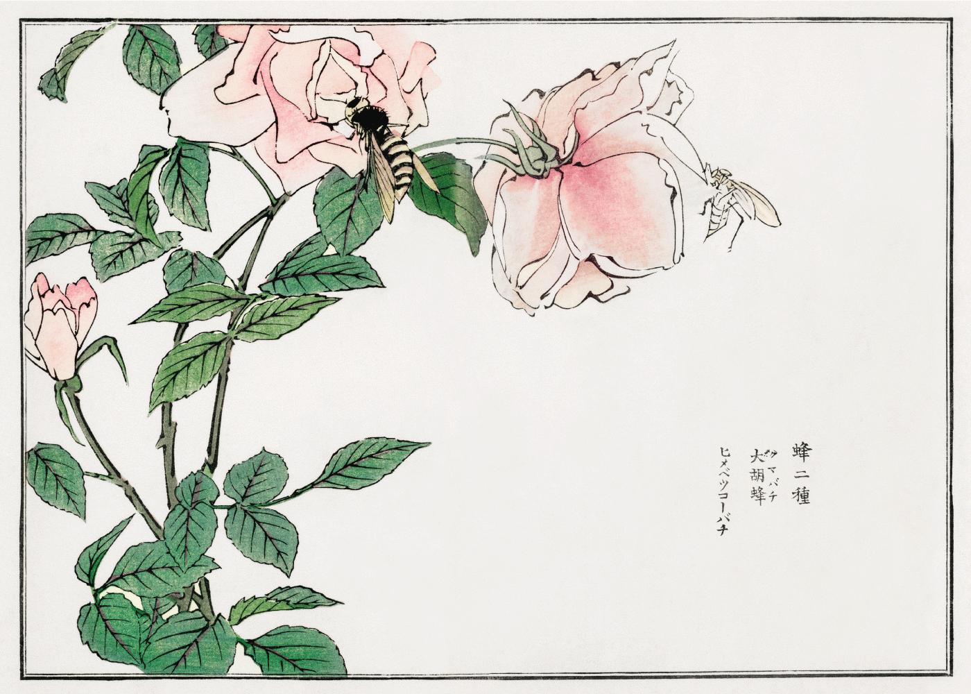 Billede af Bee and Flower - Japansk kunstplakat