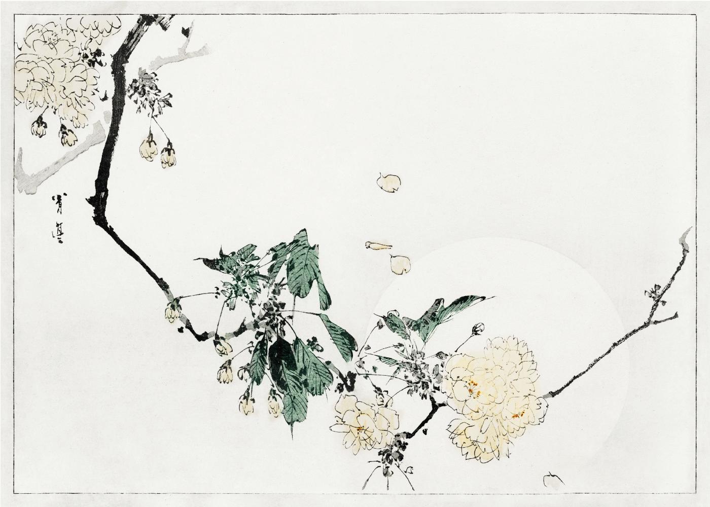 Billede af Cherry blossom - Japansk kunstplakat
