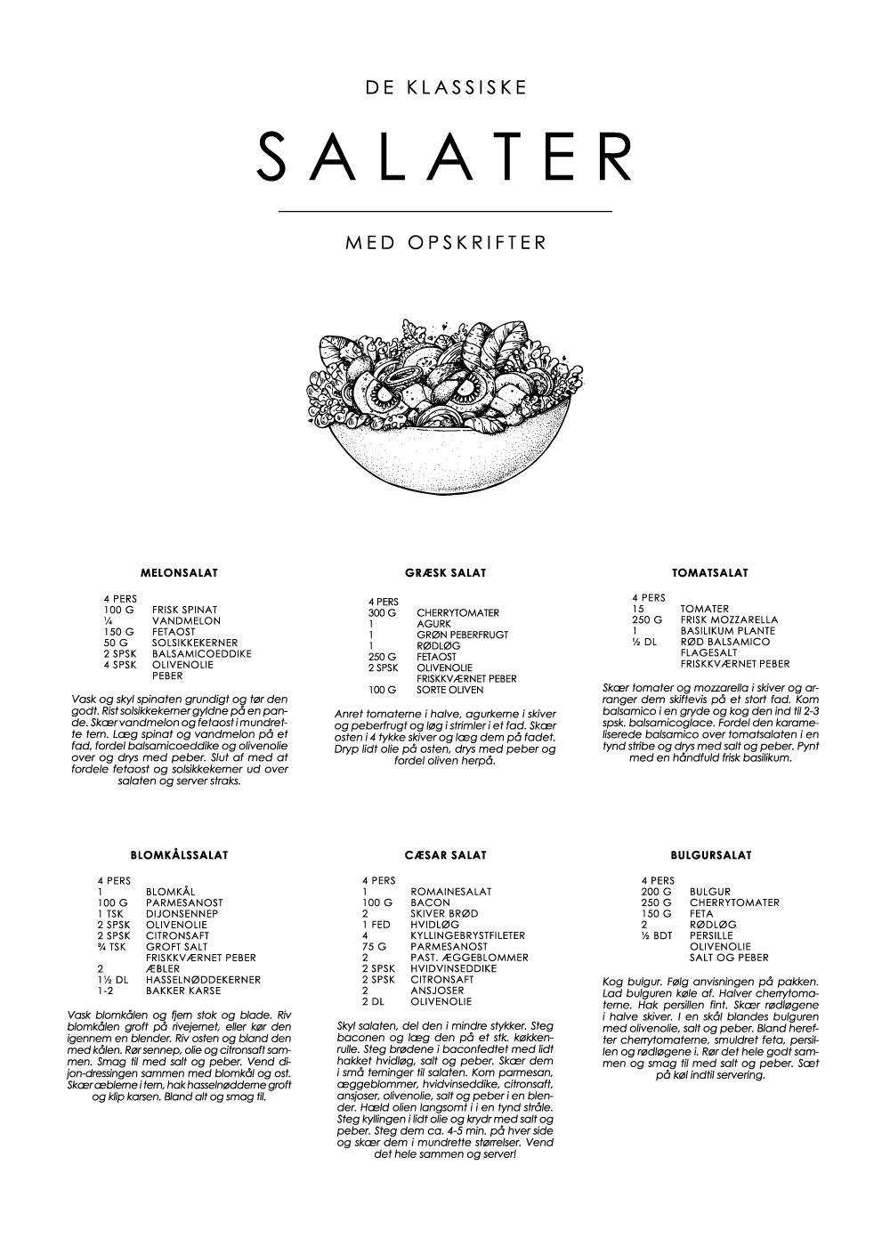 Billede af Salat guide plakat - De klassiske opskrifter