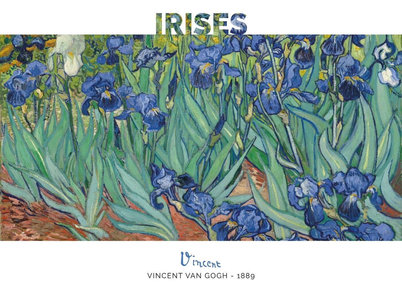 Billede af Irises - Vincent Van Gogh