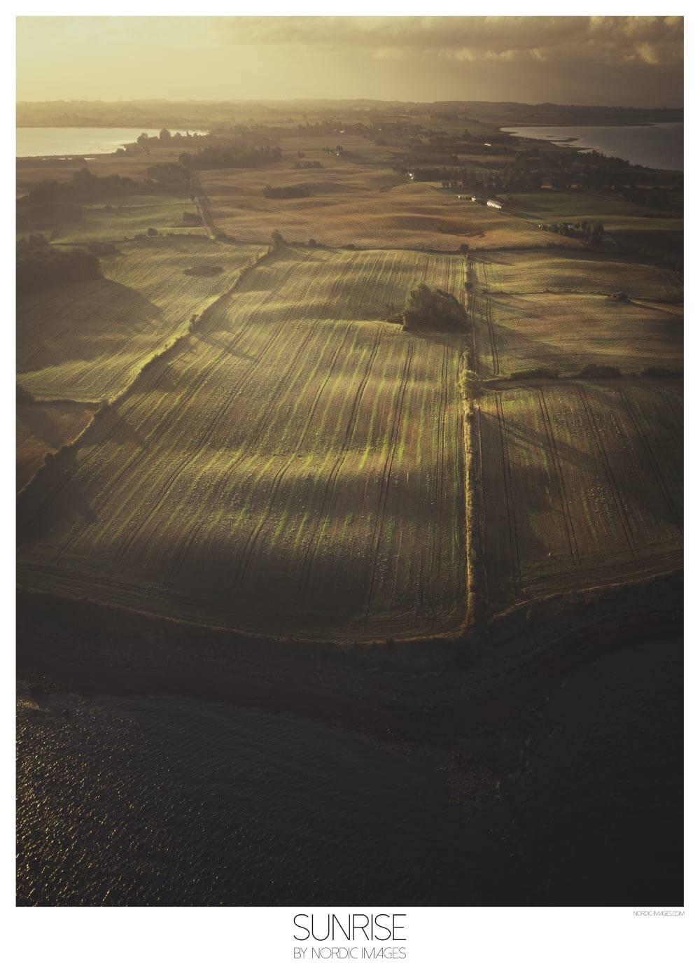 Sunrise - Brian Lichtenstein plakat