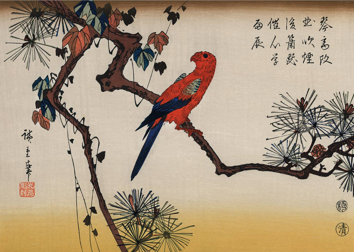 Macaw on Pine Branch - Japansk kunstplakat