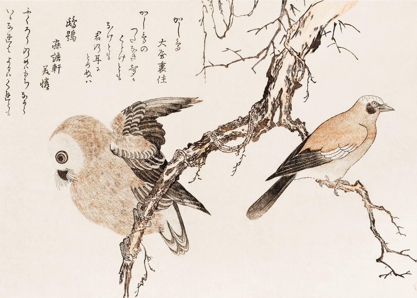 Billede af Jay and owl - Japansk kunstplakat
