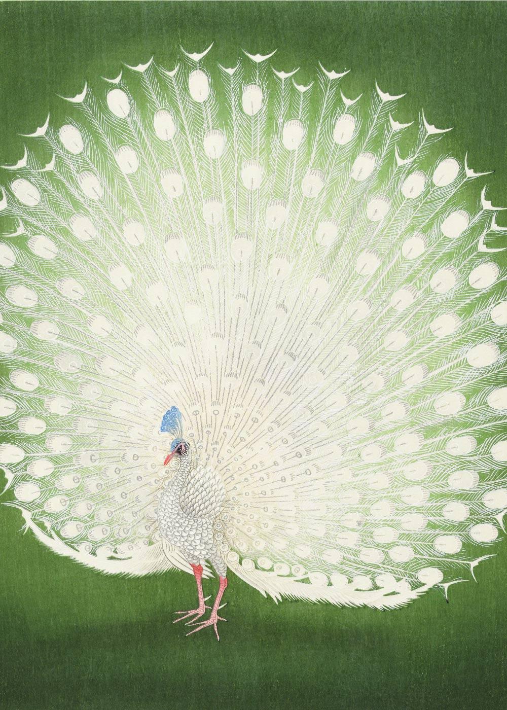 Green peacock - Japansk kunstplakat